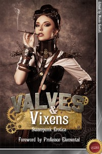 Valves and Vixens Cover